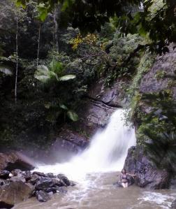 Foto por Samadhi Yaisha Vargas. El Yunque, diciembre de 2013