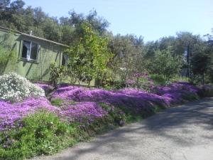 Monasterio en Deer Park, California