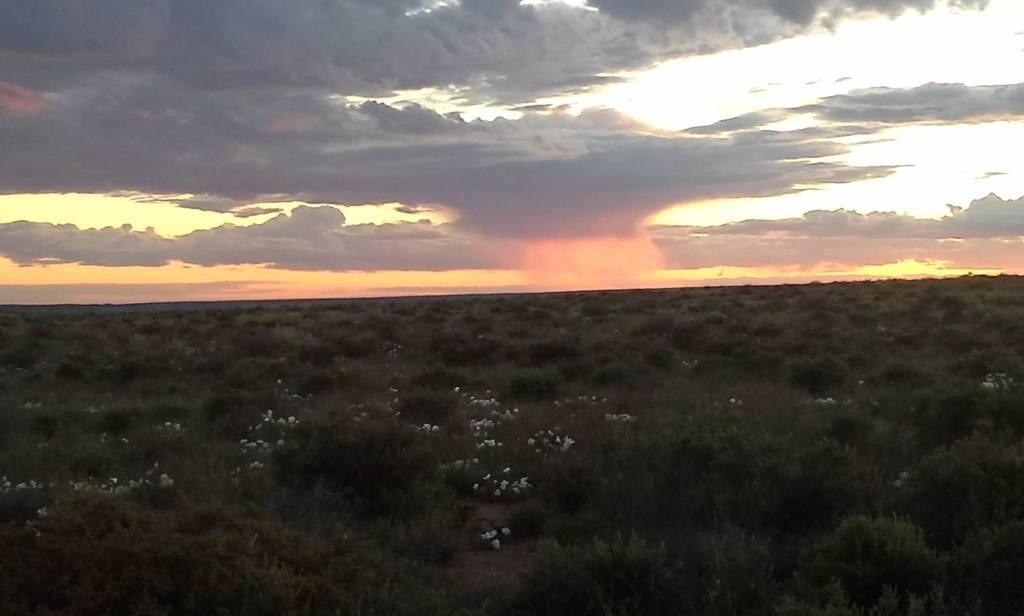 Atardecer en el Desierto Pintado. Una nube se desvanecía. El atardecer rosado la atravesaba como un holograma. Foto por Yaisha Vargas, mayo de 2015. ©2015