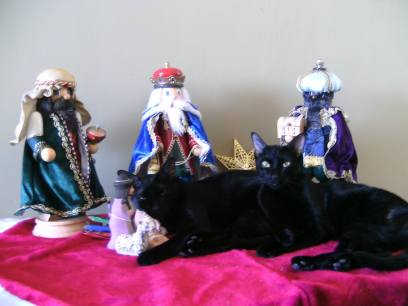 Romeo tomando la siesta con los Reyes