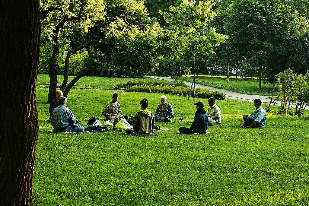 A_group_meditation_session_in_a_park_in_a_yoga_asana